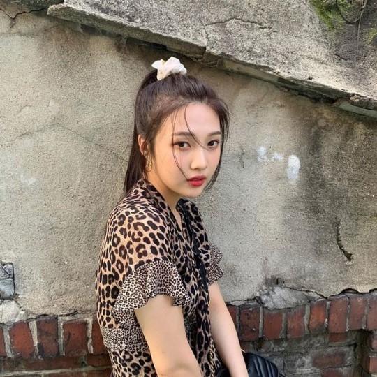 레드벨벳 조이, 과감한 호피 무늬 의상도 찰떡 소화…섹시美
